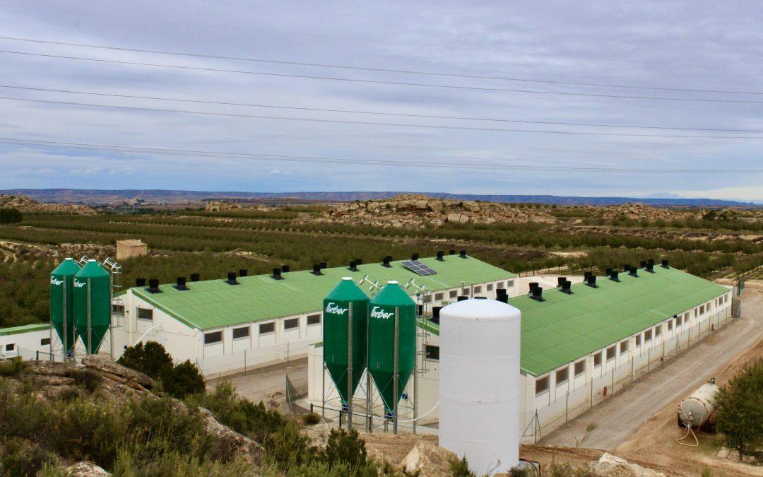 Instalación solar fotovoltaica aislada de red para explotación porcina de engorde, Caspe (Zaragoza)