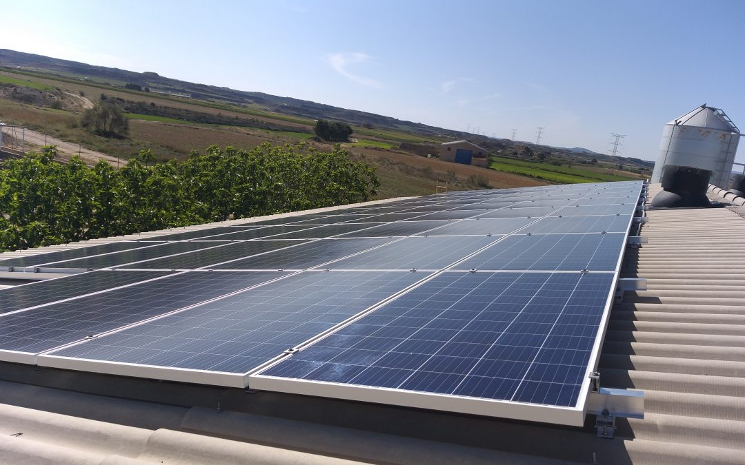 Instalación fotovoltaica de autoconsumo en explotación porcina, Caspe (Zaragoza)